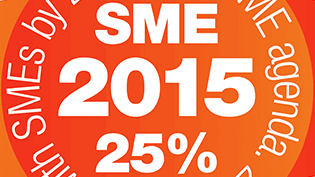 a section of our SME 25% target icon