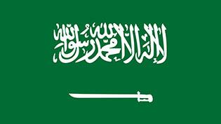 an image of the Saudi flag