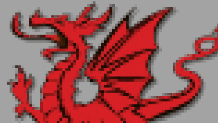 a pixelated image of a dragon